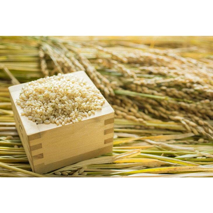 【ふるさと納税】2018年秋収穫分 福岡県産ヒノヒカリ【玄米】3kg