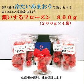 【ふるさと納税】たけしたさんちのあまおう 冷凍 いちご「濃いするフローズン」 200g×4袋