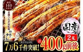 【ふるさと納税】AU-043【当店オリジナル味付け】九州産・鰻の蒲焼2尾(約200g×2尾)