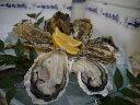 【ふるさと納税】豊前海一粒牡蠣