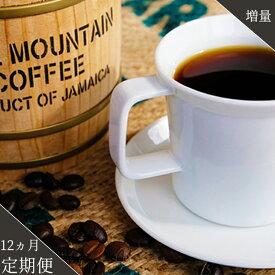 【ふるさと納税】<定期便>珈琲の王様 ブルーマウンテン 12ヵ月(粉)【増量】
