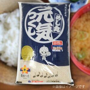 【ふるさと納税】福岡県産米 元気つくし 5kg 筑後平野で生まれた小松菜のお味噌汁付き