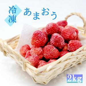 【ふるさと納税】白木のいちご 旬のおいしさそのまま 冷凍あまおう 2kg(500gx4P)