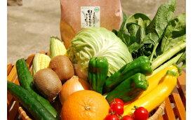【ふるさと納税】KA0263_【9〜11品】むなかた旬のお任せセット(野菜・フルーツ・お米)