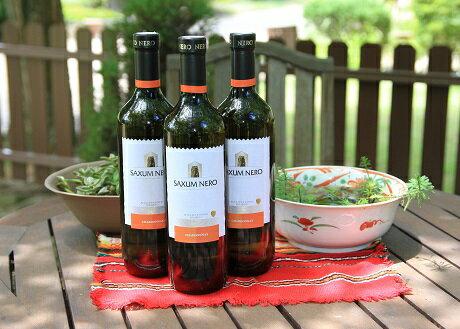 【ふるさと納税】A497 ブルガリア白ワイン3本セット
