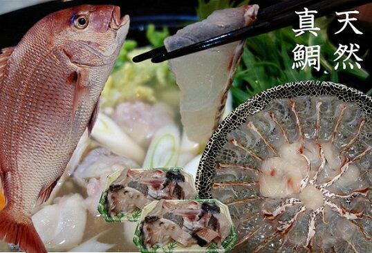 【ふるさと納税】A814 天然真鯛しゃぶしゃぶ鍋セット