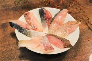 【ふるさと納税】漁師のおススメ切り身セット_KA0455 送料無料