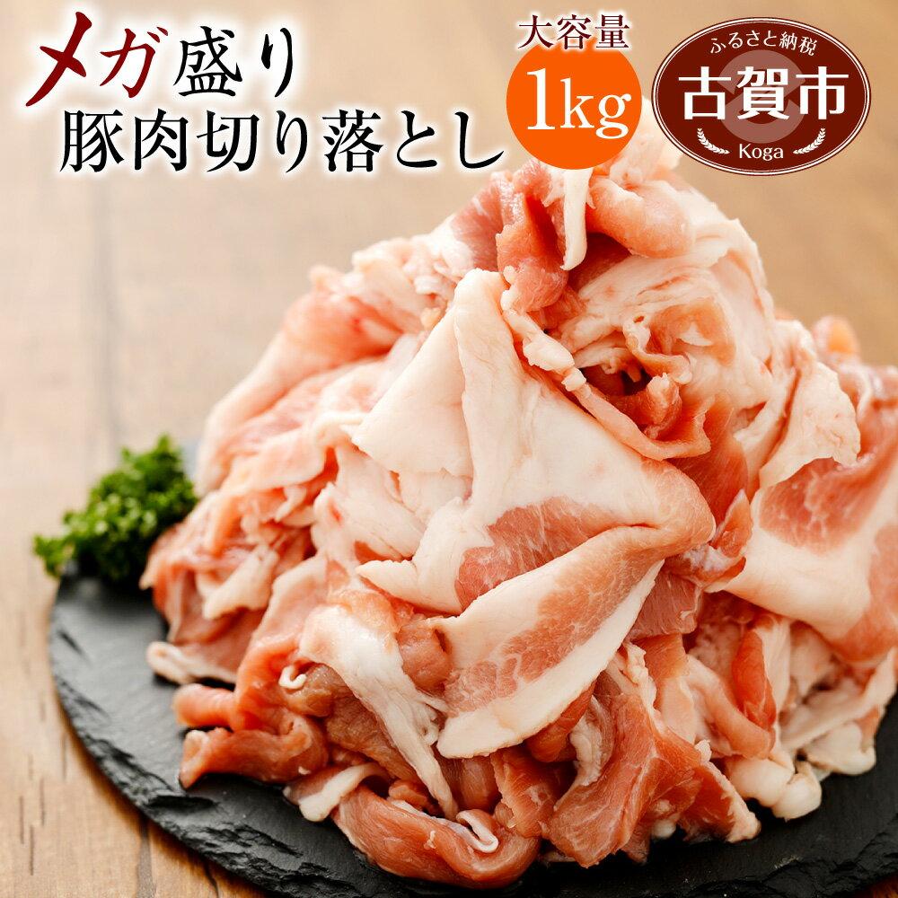【ふるさと納税】九州産 豚肉 切り落とし メガ盛り 1kg 500g×2パック 切落し 国産 送料無料