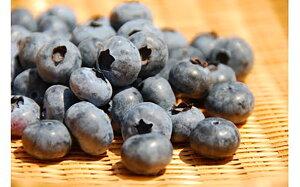 【ふるさと納税】無農薬・有機肥料で丹精込めて栽培したブルーベリー 1kg 200g×5パック ブルーベリー 果物 くだもの フルーツ 無農薬 有機肥料 冷蔵 国産 九州 福津市産 送料無料