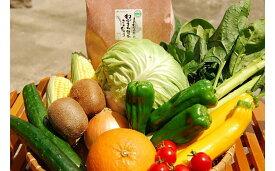【ふるさと納税】福津 むなかた 旬のお任せセット お米 野菜 フルーツ 9〜10品 詰め合せ セット お米 2kg 果物 くだもの 詰合せ 冷蔵 国産 送料無料