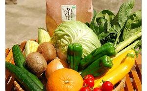【ふるさと納税】むなかた旬のお任せセット お米 野菜 フルーツ 10品 詰め合せ セット お米 2kg 果物 くだもの 詰合せ 冷蔵 国産 送料無料