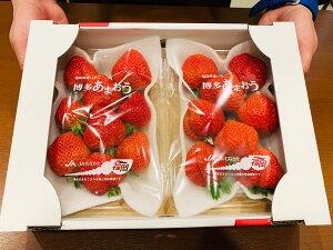 【ふるさと納税】温暖で穏やかな気候で丹精込めて栽培した「博多あまおう」 270g×2パック 計540g あまおう 博多あまおう いちご 苺 イチゴ 果物 くだもの フルーツ 福津市産 国産 送料無料