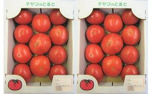 【ふるさと納税】福津産★桃太郎トマト 11〜12個入り2箱セット 【野菜類/トマト・とまと・やさい】