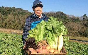 【ふるさと納税】種にこだわり!季節の無農薬・無肥料栽培野菜セット 7品目【野菜類・セット・詰合せ・やさい】