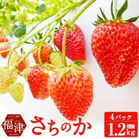 【ふるさと納税】さちのか いちご 300g×4パック 計1.2kg あんずの里 果物 フルーツ イチゴ 苺 九州産 国産 福岡県産 送料無料
