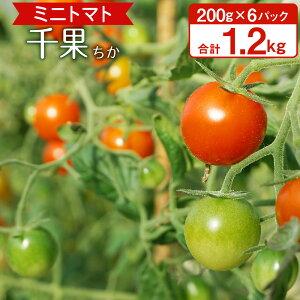 【ふるさと納税】千果 ミニトマト 200g×6パック 合計1.2kg あんずの里 トマト プチトマト とまと 野菜 九州産 国産 送料無料