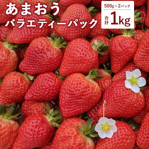 【ふるさと納税】あまおう バラエティーパック 500g×2パック 合計1kg 予約 くわの農園 あまおう いちご 苺 イチゴ 果物 くだもの フルーツ 福津市産 国産 送料無料