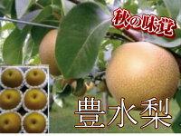 【ふるさと納税】B214JAにじ豊水梨5kg