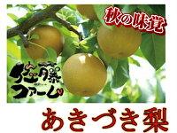 【ふるさと納税】佐藤ファームあきづき梨5kg