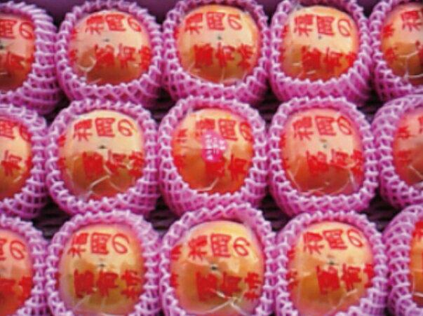 【ふるさと納税】 日永園 冷蔵富有柿 5キロ箱