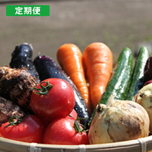 【ふるさと納税】 【月イチ定期便】UIC 名水うきはの無農薬減農薬お野菜セット(1ヶ月1箱×12回)