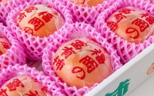 【ふるさと納税】 日永園 冷蔵富有柿 7玉〜8玉(2L〜3L)