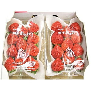 【ふるさと納税】あまおう 贈答用 約540g (約270g×2パック) 福岡県産 いちご イチゴ フルーツ 果物 九州 ギフト 送料無料