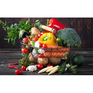 【ふるさと納税】旬の野菜ふるさとパック<エコ・ファーム楽々園> 【野菜・セット・詰合せ】