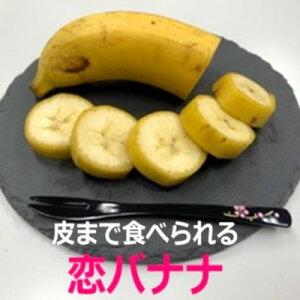【ふるさと納税】朝倉産【恋バナナ】5本セット 【果物詰合せ・フルーツ】