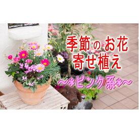 【ふるさと納税】季節のお花寄せ植え(赤・ピンク系) 【植物・花】