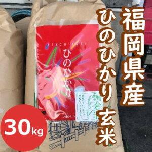 【ふるさと納税】「ヒノヒカリ」玄米30kg 【ヒノヒカリ・玄米・お米】