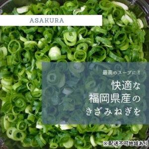 【ふるさと納税】カット ねぎ 3kg(1kg×3袋)【配送不可エリア有り】 【野菜・ねぎ】