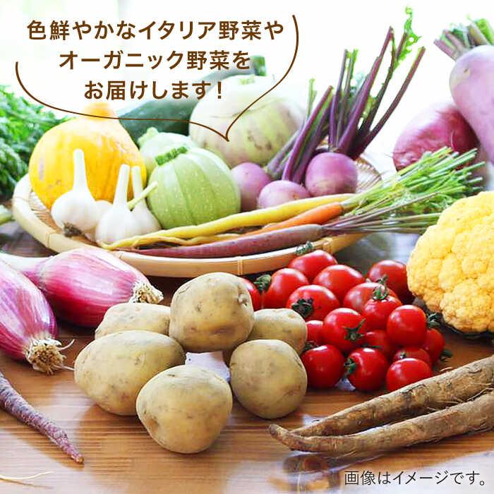 【ふるさと納税】旬を味わう『糸島野菜セット』AJB001