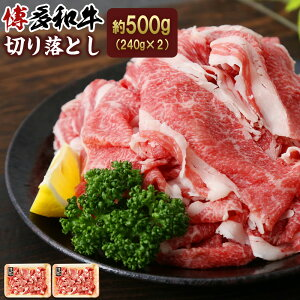 【ふるさと納税】博多和牛 切り落し 約500g 250g×2パック 和牛 牛肉 お肉 小間切れ 小分け 冷凍 福岡県産 国産 送料無料