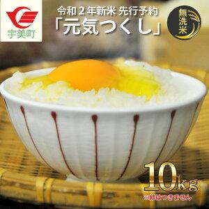 【ふるさと納税】【B-016】無洗米「元気つくし」10kg ※令和2年産新米