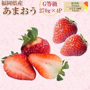 【ふるさと納税】【数量限定】あまおう Gサイズ 合計1080g(270gアップ×4P) いちご 苺 フルーツ 果物 先行予約 福岡県産 冷蔵 送料無料 ※2月上旬より順次発送予定