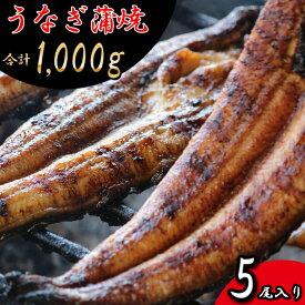 【ふるさと納税】RZ001 お魚屋さんのうなぎ蒲焼 約1000g (5尾) ウナギ 送料無料 冷凍