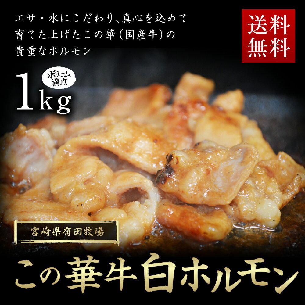 【ふるさと納税】国産この華牛白ホルモン1kg 国内産 ホルモン 焼肉