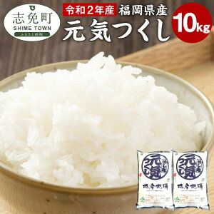 【ふるさと納税】福岡県産 元気つくし 10kg (5kg×2袋) 白米 お米 ご飯 米 精米 送料無料