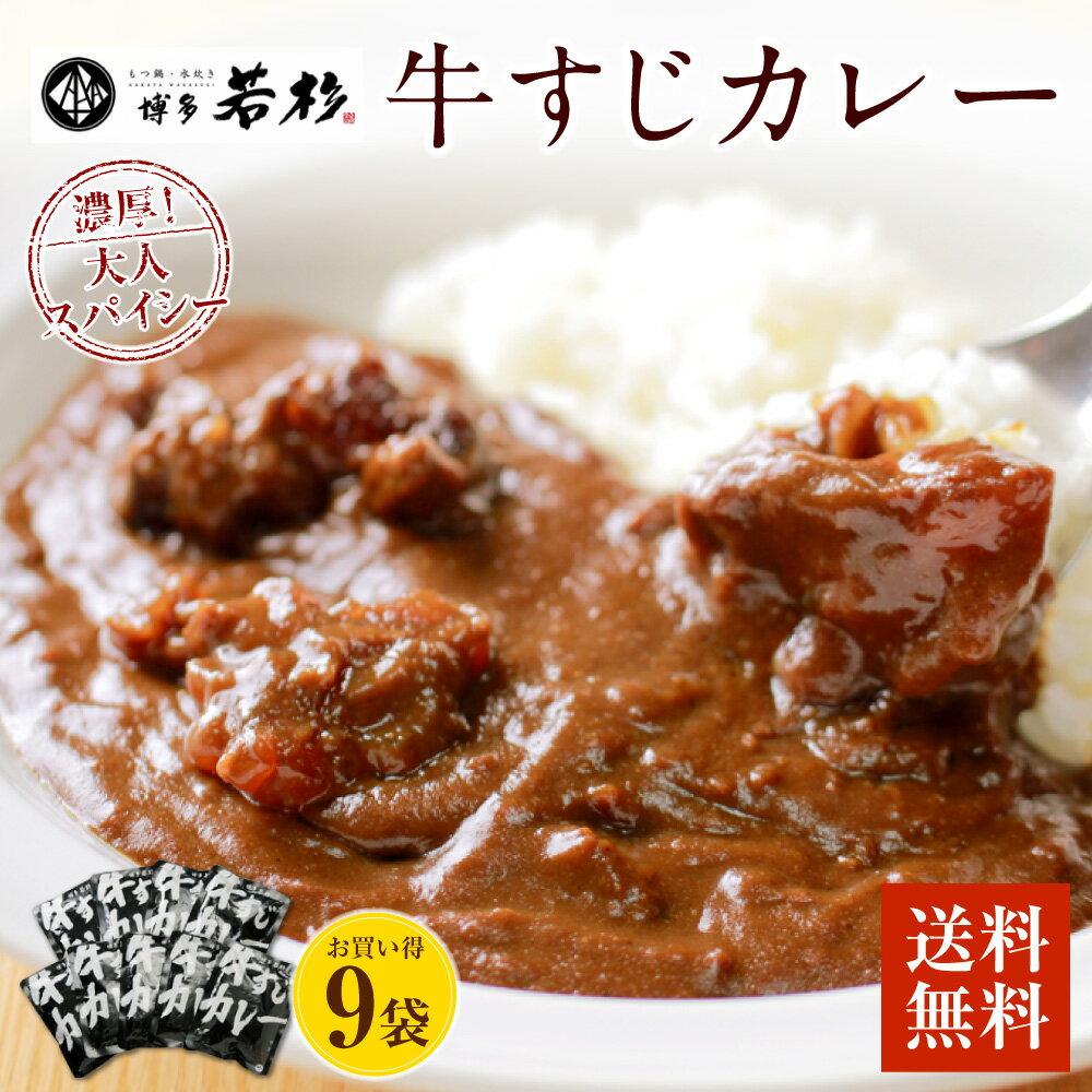 【ふるさと納税】【送料無料】博多牛すじカレー200g x 9パック