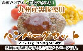 【ふるさと納税】A368.九州産黒豚ハンバーグセット