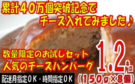 【ふるさと納税】Z106.累計40万個突破記念!お試し1.2キロ!人気のチーズハンバーグ【150g×8個】