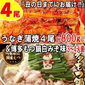【ふるさと納税】B152.うなぎの蒲焼4尾&博多もつ鍋白みそ味(3〜4人前)【スタミナ満点セット】