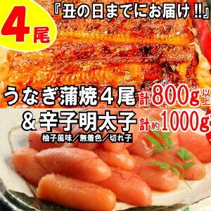 【ふるさと納税】B153.うなぎの蒲焼4尾&無着色辛子明太子1キロ【ご飯のお供!最強セット】