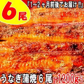 【ふるさと納税】うなぎの蒲焼6尾(計1200g以上)『1~2ヶ月前後でお届け!!』.AE84