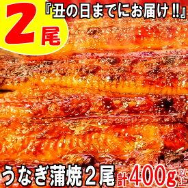 【ふるさと納税】ZH30.『丑の日までにお届け!!』うなぎの蒲焼2尾(計400g以上)
