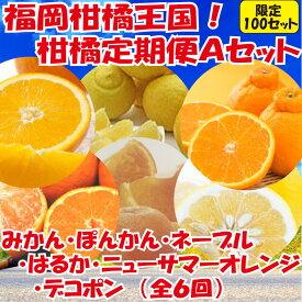 【ふるさと納税】F029.福岡柑橘王国!柑橘定期便Aセット