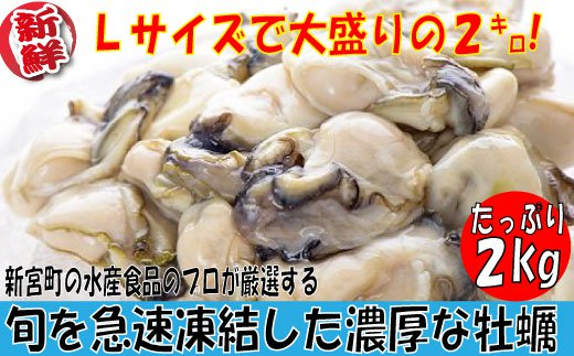 【ふるさと納税】A304.旬を急速凍結した濃厚な牡蠣(2kg)