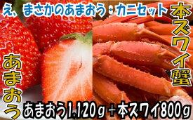 【ふるさと納税】B131.冬を満喫.あまおう(1120g)・カニ(800g)セット.2021年12月以降配送