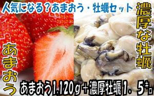 【ふるさと納税】B132.冬の定番セット.あまおう(1120g)・牡蠣(1.5キロ)セット.2020年11月以降配送